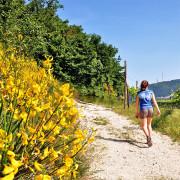escursioni-a-piedi
