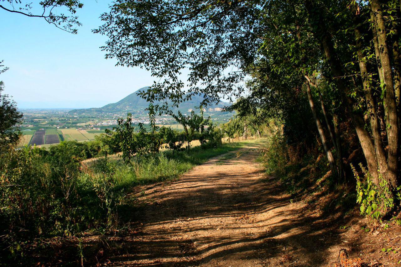 sentiero-monte-lozzo