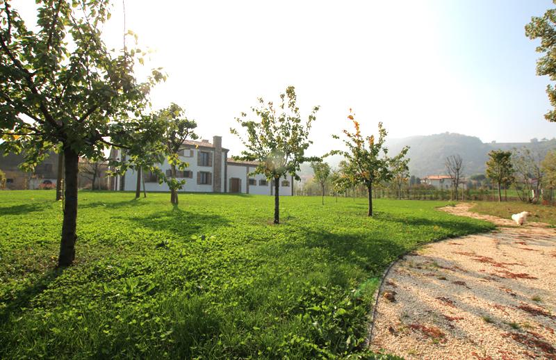 Azienda agricola Luvigliano
